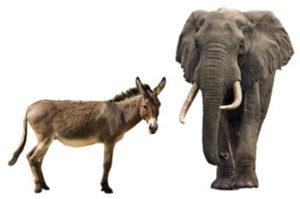 L'asino, simbolo del Partito democratico, e l'elefante, simbolo del Partito repubblicano
